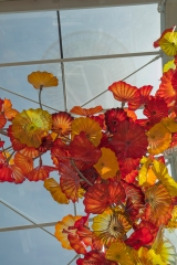 Chihuly_Space_Needle